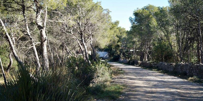 camino-can-pei-santa-barbara-170D798F0-E8D7-3BE5-55A0-594D72DBED50.jpg