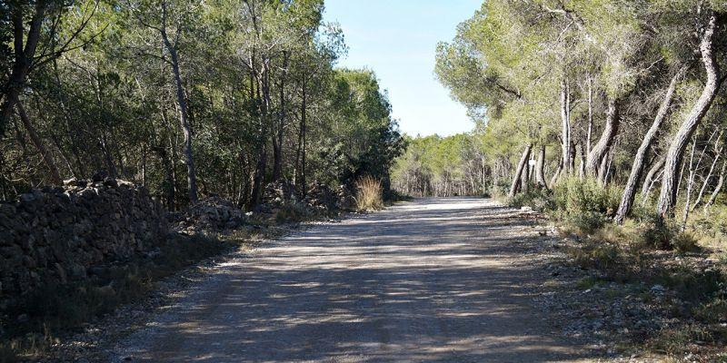 camino-can-pei-santa-barbara-226731200-3AA3-7852-C6DC-5AEECD61A734.jpg