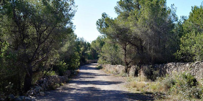 camino-can-pei-santa-barbara-498F1DA2F-4A1C-1140-2675-A67BEBE5DF65.jpg