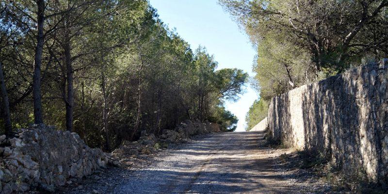 camino-can-pei-santa-barbara-5AE69D15C-1B03-66ED-058E-E96EAB0AB1D0.jpg