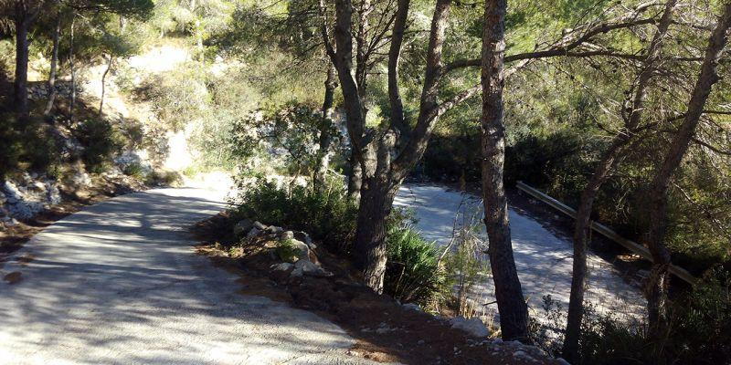 carretera-de-la-trinitat-28EC006D4-16B8-1871-26B2-1969E25E4783.jpg